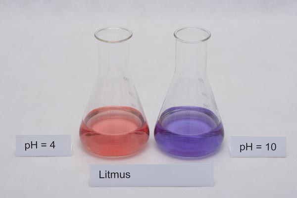 colors of litmus indicator in different pH solutions